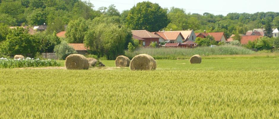 Call to SME farmers